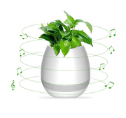 Музыкальный умный горшок для цветков. Бесплатная доставка ХИТ-НОВИНКА